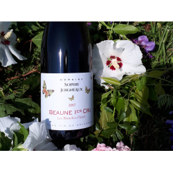 "Beaune 1er cru ""Blanches Fleurs"""