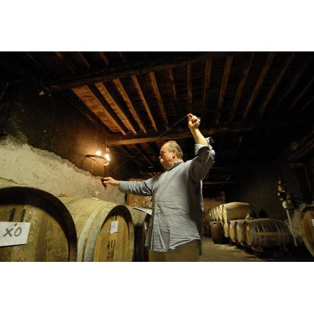 Armagnac Ugni Blanc 1979 -43° WIT de 6 CL