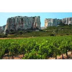 Château Calissanne Rouge 2018 AOP Coteaux d'Aix en Provence