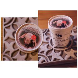 Glace parfum au choix selon stocks - au lait de chèvre bio - 460 mL