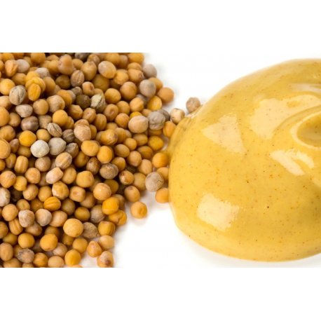 Condiment bio,  Moutarde de Dijon biologique