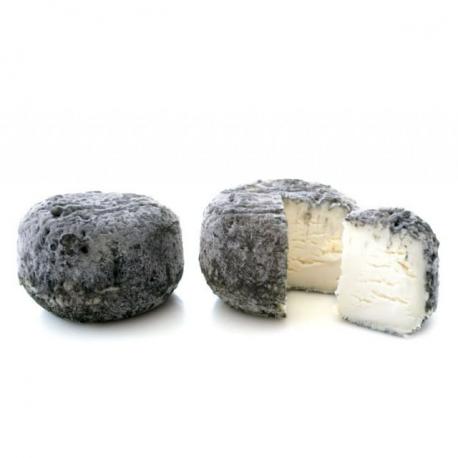 Chèvre Rond Tradition Frais Cendré 6 × 200 gr